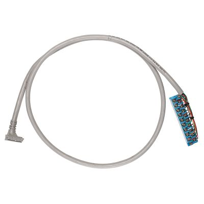 Rockwell Automation 1492-CABLE010V