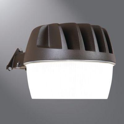 Cooper Lighting Solutions EA24